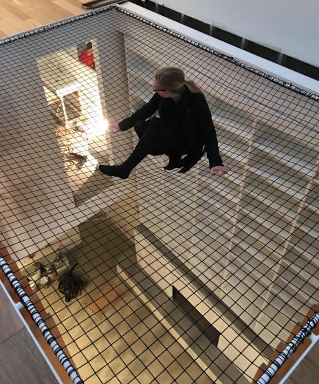 Mise en place d'un filet tendu dans une résidence. Tensioned net in a home.